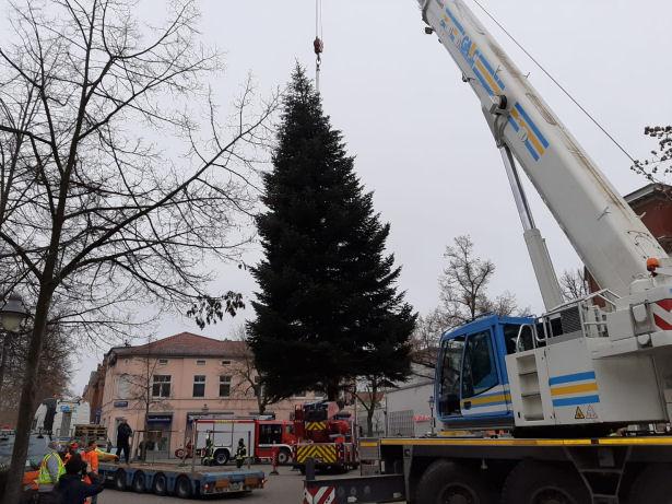 Kraneinsatz Weihnachtsbaum